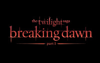 The Twilight Saga: Breaking Dawn: Part 1 [5] wallpaper 2560x1600 jpg