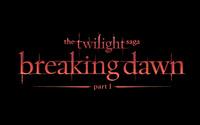 The Twilight Saga: Breaking Dawn: Part 1 [5] wallpaper 2560x1600 jpg