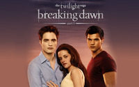The Twilight Saga: Breaking Dawn: Part 1 [3] wallpaper 2560x1600 jpg
