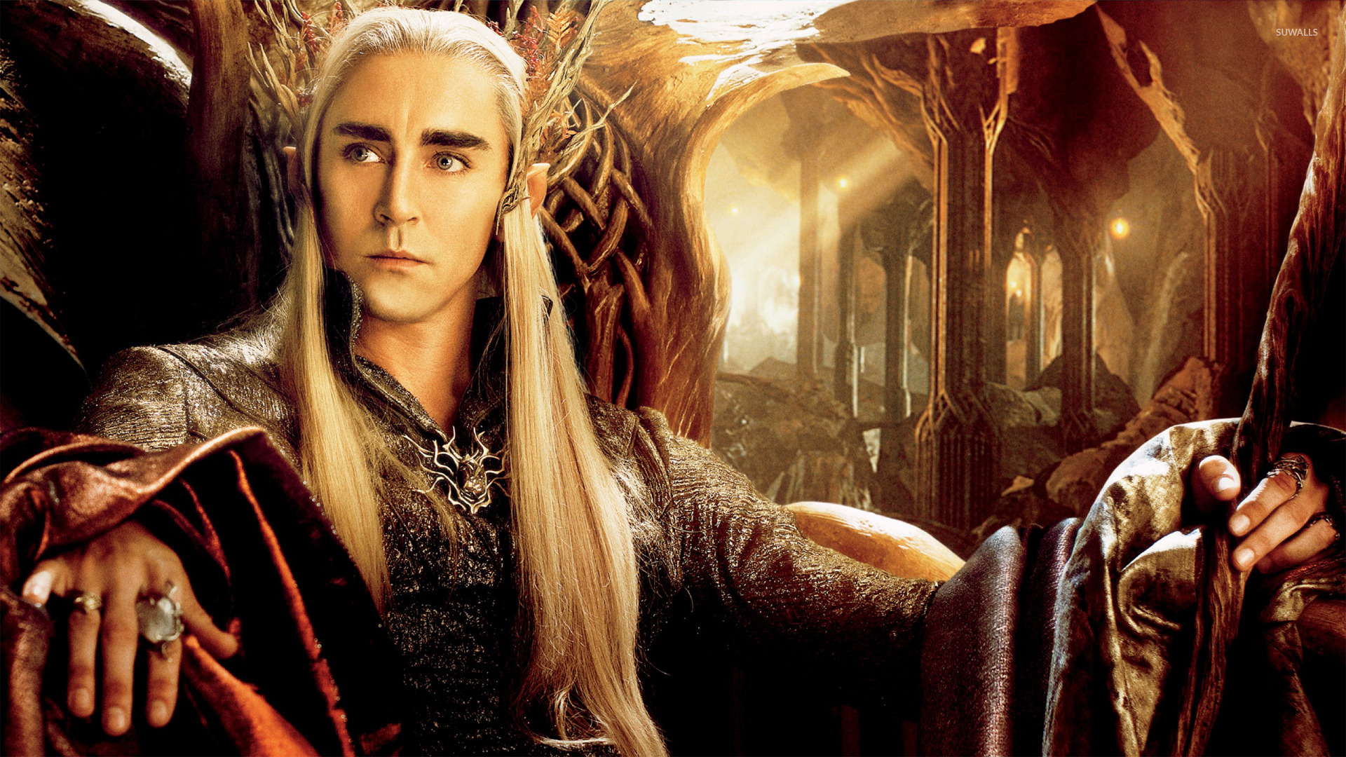 Thranduil - The Hobbit: The Desolation - 843.5KB