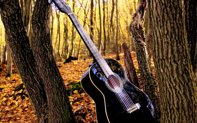 Guitar in the forest wallpaper