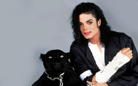 Michael Jackson wallpaper 1920x1200 jpg