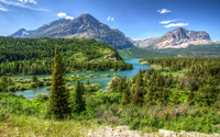 Amazing green forest in Glacier National Park wallpaper 2880x1800 jpg