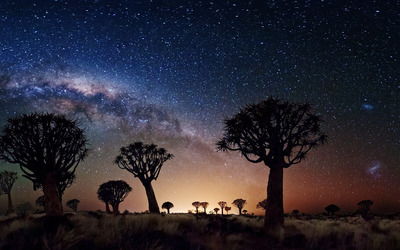 Amazing starry sky wallpaper