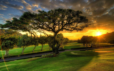Amazing sunset over the beautiful park Wallpaper