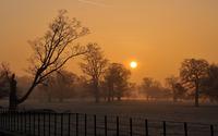Amazing winter sunset wallpaper 1920x1200 jpg
