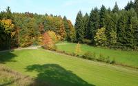 Autumn forest [5] wallpaper 1920x1200 jpg