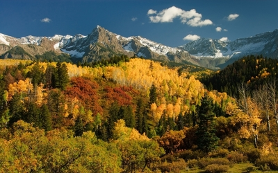 Autumn forest by the snowy peaks wallpaper