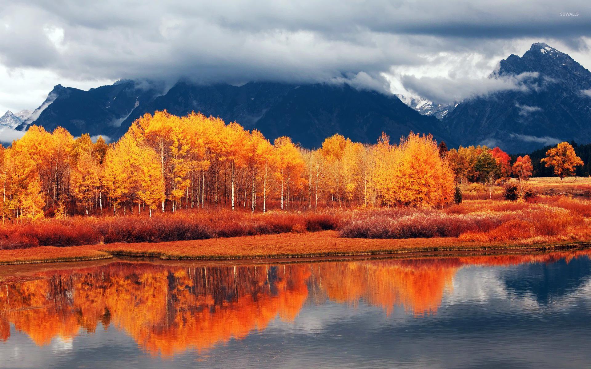 Autumn landscape [2] wallpaper - Nature wallpapers - #15638