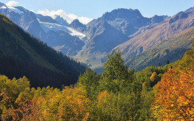 Autumn mountain forest near the snowy cliffs wallpaper