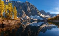Autumn trees by Floe Lake wallpaper 2560x1600 jpg
