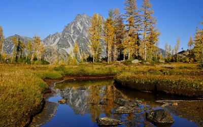 Autumn trees in the rocky mountains wallpaper