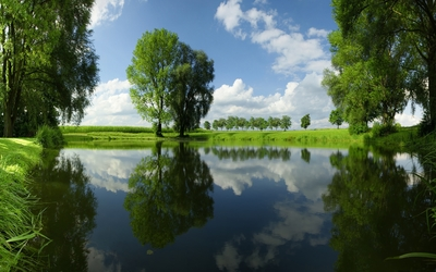 Beautiful green nature reflecting in the mirror of the lake wallpaper