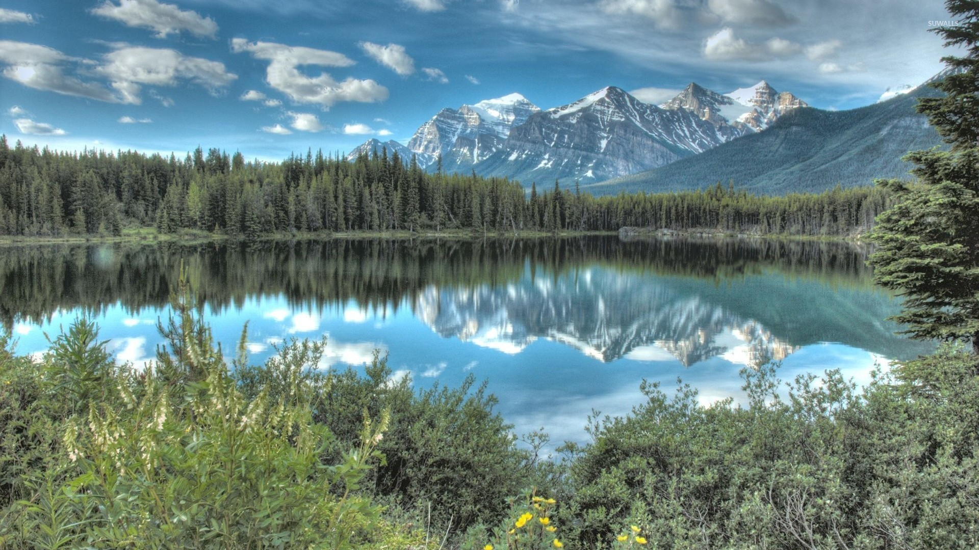 Beautiful blue sky reflecting in the lake wallpaper for Discount wallpaper canada