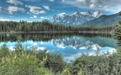 Beautiful blue sky reflecting in the lake wallpaper