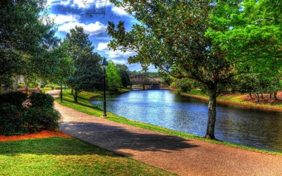 Beautiful park by the river wallpaper