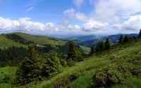 Beautiful summer day in the green mountains wallpaper 2560x1600 jpg