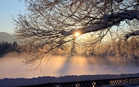 Beautiful sunset light reflecting on the snowy nature wallpaper 1920x1200 jpg