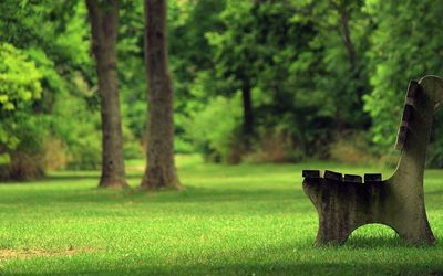 Bench in the park [2] Wallpaper