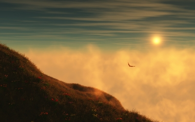 Bird flying in the fog wallpaper
