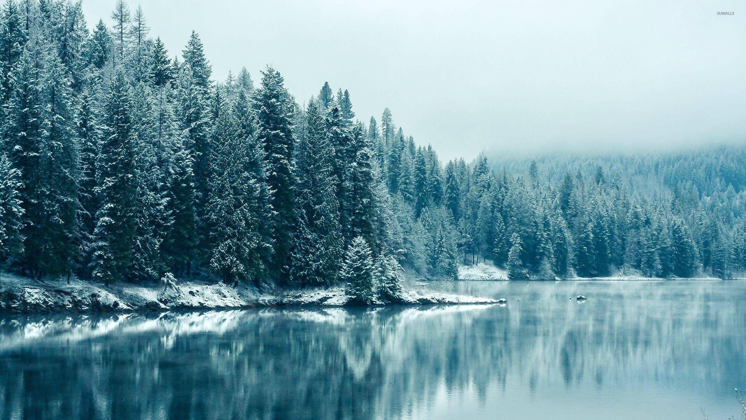 Blue winter lake wallpaper - Nature wallpapers - #29277