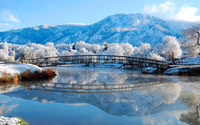 Bridge near frosty trees wallpaper 1920x1200 jpg
