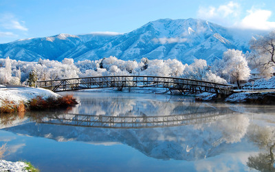 Bridge near frosty trees wallpaper