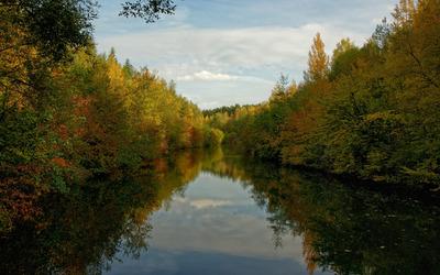 Calm river splitting the autumn forest wallpaper