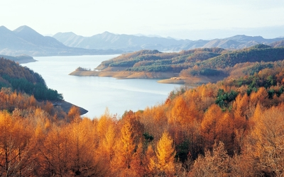 Chungjuho Lake surrounded by rusty forest wallpaper