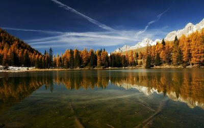 Clear mountain lake reflecting the trees wallpaper