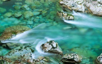 Clear water river washing the mossy rocks wallpaper