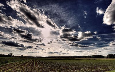 Clouds over the wheat field wallpaper