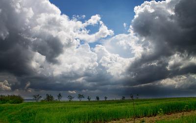 Cloudy field wallpaper