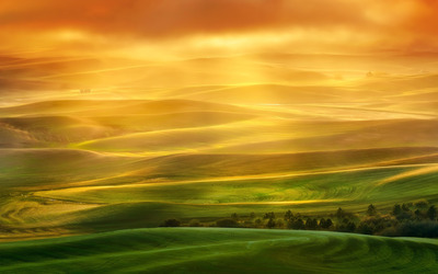 Colorful fields wallpaper