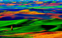 Colorfull hills wallpaper 1920x1200 jpg