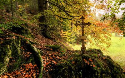 Cross on mossy rock wallpaper