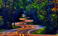 Curvy forest road wallpaper 1920x1080 jpg