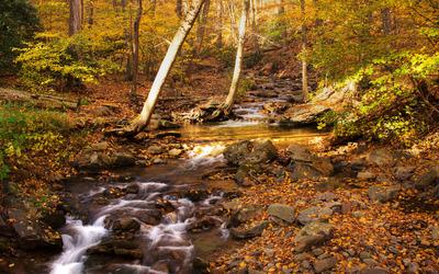 Delaware Water Gap wallpaper