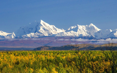 Denali National Park Wallpaper