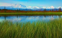 Denali National Park and Preserve wallpaper 1920x1200 jpg