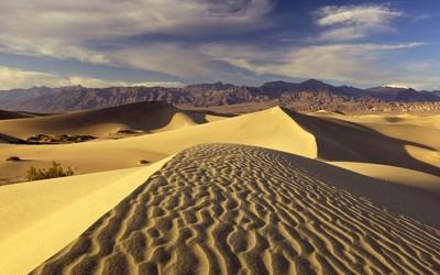Desert [3] Wallpaper