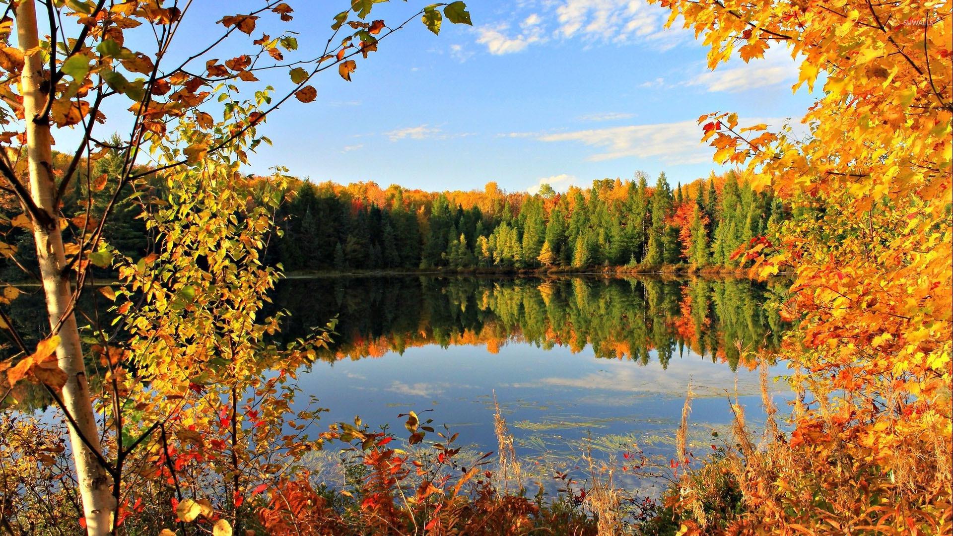 autumn wallpapersautumn picautumn picturesautumn - photo #8