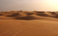 Dunes wallpaper 1920x1200 jpg