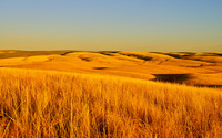 Fields of dry grass wallpaper 2880x1800 jpg