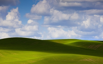 Fluffy clouds over the amazing green field wallpaper