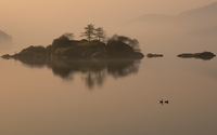 Foggy lake wallpaper 2560x1600 jpg