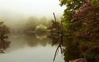 Foggy lake [2] wallpaper 1920x1200 jpg
