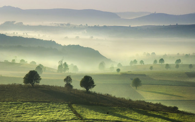 Foggy morning on the green hills wallpaper