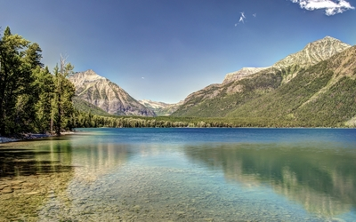 Forest on the rocky mountains on a sunny day at the lake wallpaper