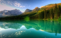 Forest reflecting in the lake mountain wallpaper 2880x1800 jpg